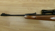 Remington EXPRESS COMPACT .22  Air Rifles for sale
