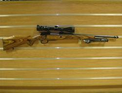 Parker Hale Scout  .308  Rifles For Sale in Wiltshire