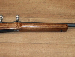 Ruger m77 Bolt Action. 243 Rifles