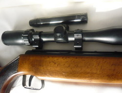 Original 50. 22 Air Rifles