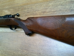 Ruger M77 Bolt Action 22-250 Rifles