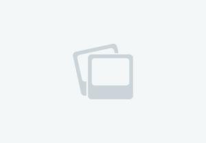 Anschutz Single-Point Slings