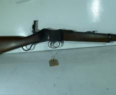 Martini Henry  Single Shot .22  Rifles
