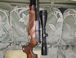 BSA r10 mk 2 super carbine. 177 Air Rifles