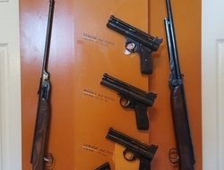 Various Air Rifles