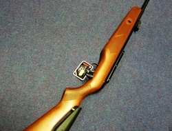 Gamo Hunter IGT. 22 Air Rifles