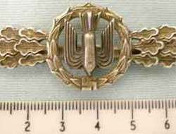Luftwaffe Heavy / Medium & Dive Bombers Squadron Clasp in GOLD. N 38 - N 38 Luftwaffe Heavy / Medium & Dive Bombers Squadron Clasp in GOLD.