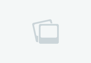 Air Force One Adras Bipod in Black