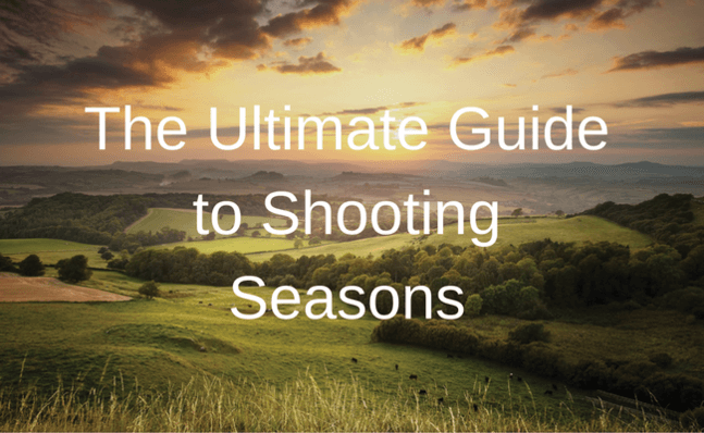 The Ultimate Guide to Shooting Seasons