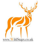 Wild Stags